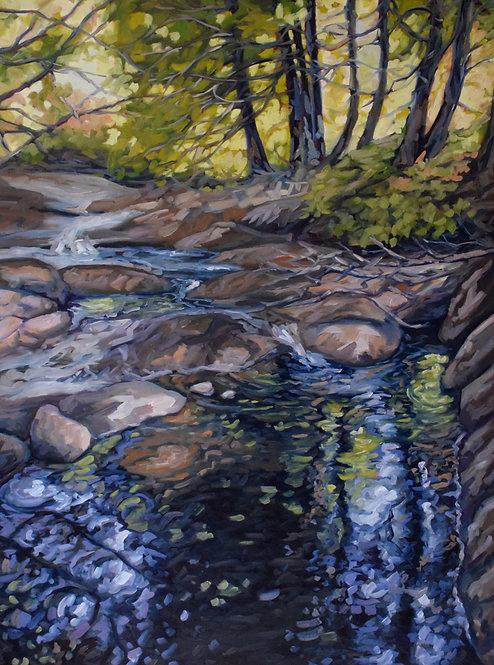 "Stream at King's Falls | 40""x30"" | Kerry Walford"