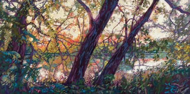 Dappled River Sunset