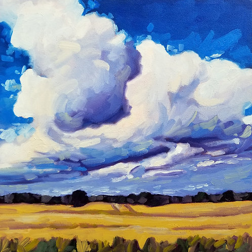 """Summer Clouds 