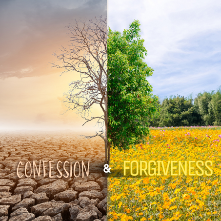 Episode 225: Confession and Forgiveness