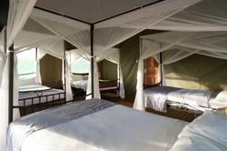 Ngorongoro Wildcamps
