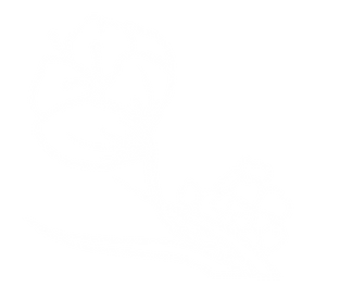 DGUOM flower template-13.png