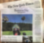 Pulse Portal New York Times Cover Davis