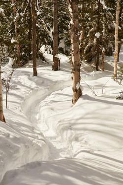 randonnée raquette hiver refuge
