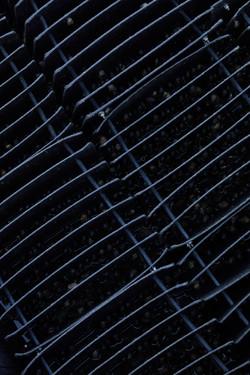 032-CC-6453-FriendlyFrenchy
