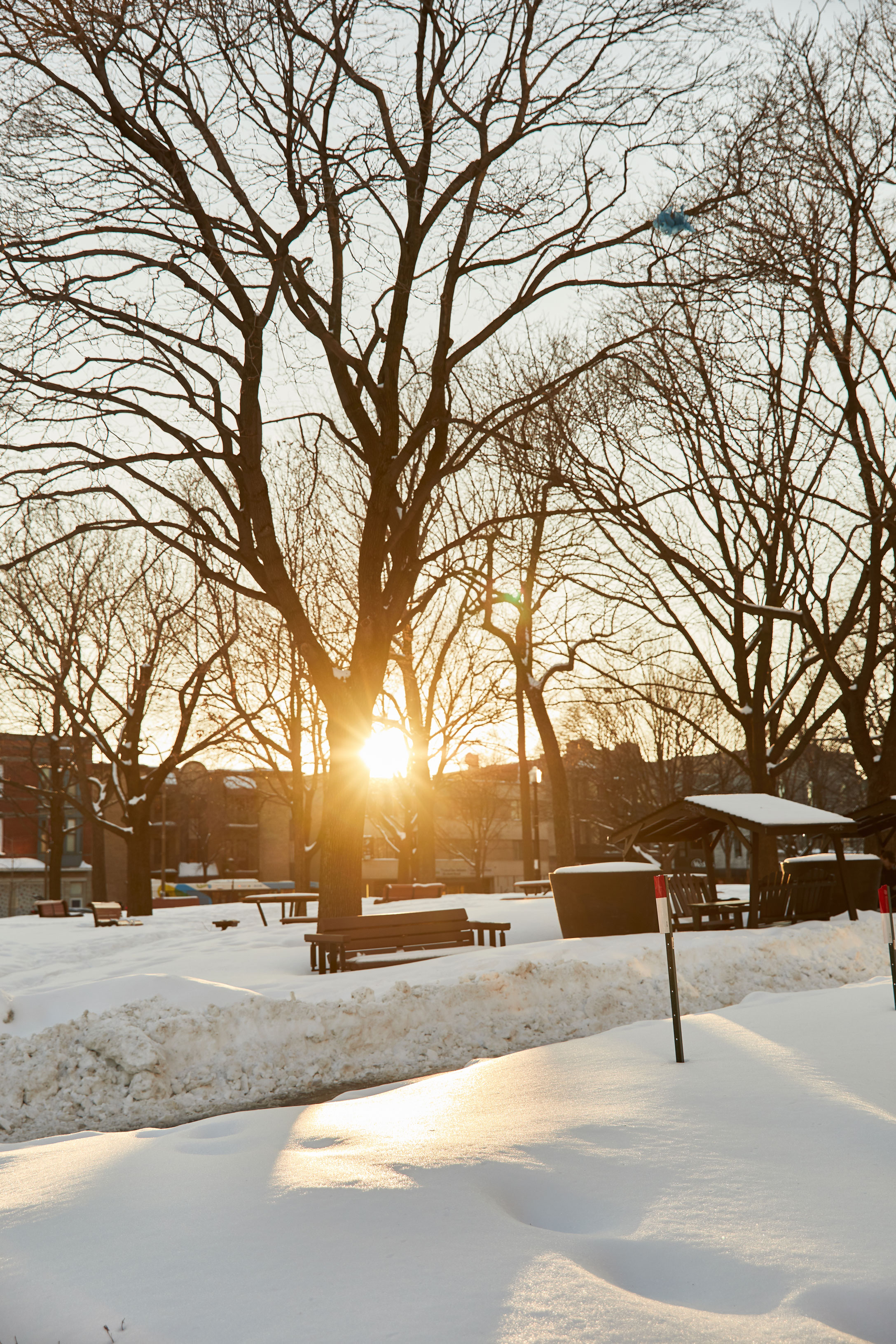 randonnée raquette hiver cityguide