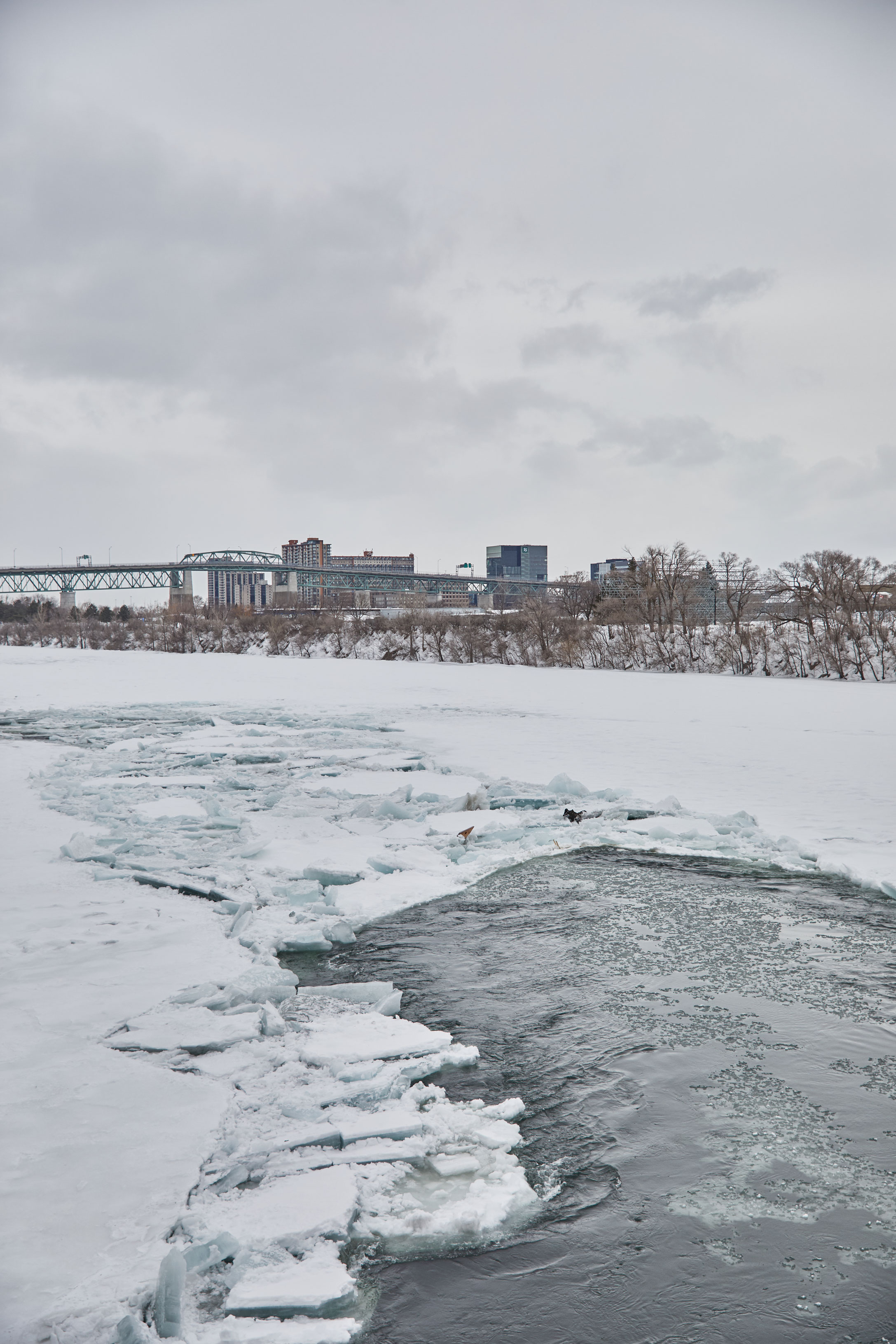 randonnée raquette hiver montreal