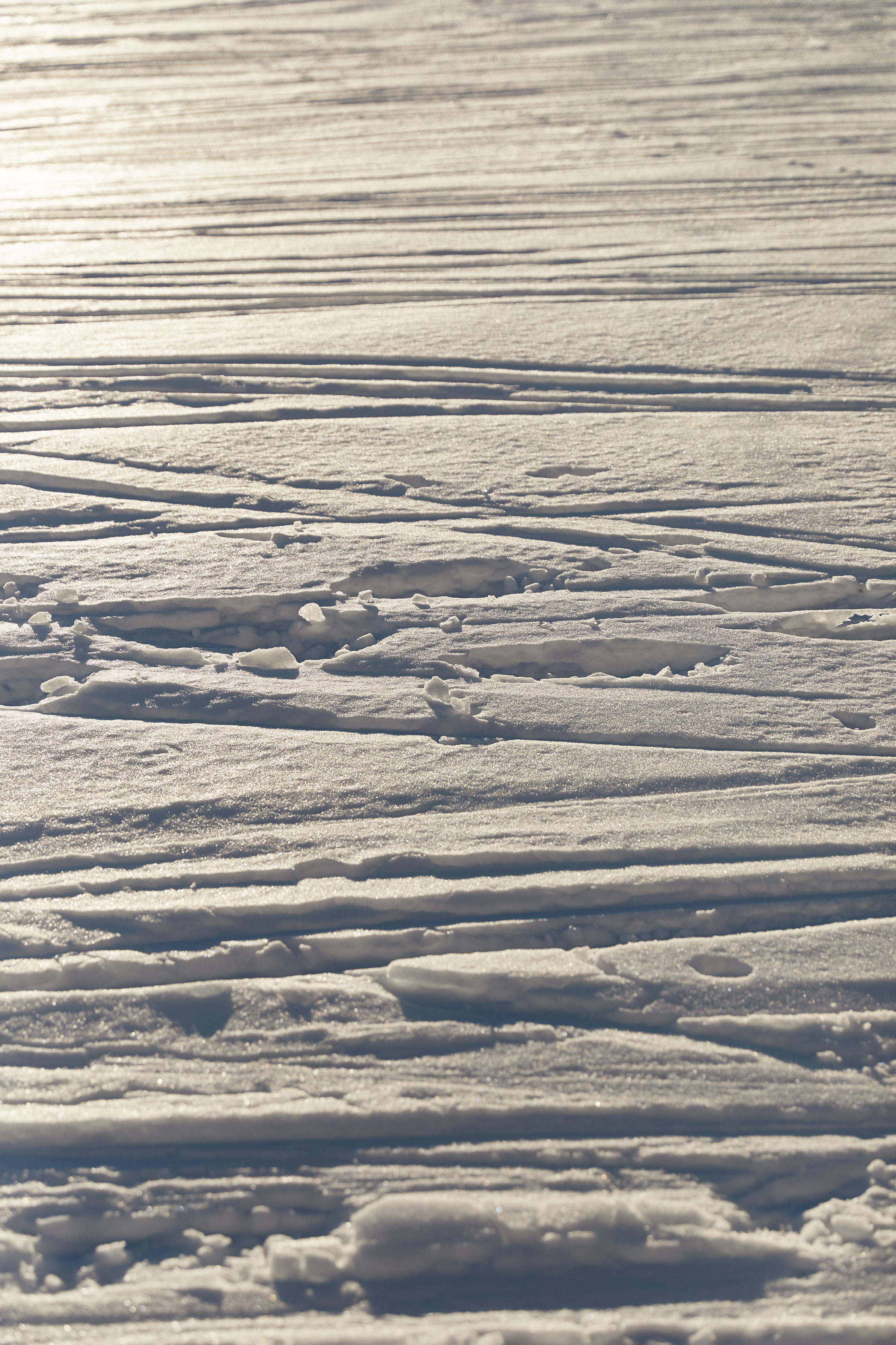 photographe expedition rando ski