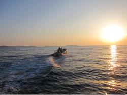 towards the sunset Ibiza