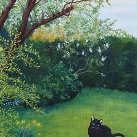Yoshiko's cat 1.JPG
