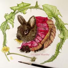 rabbit and dandelions watercolour
