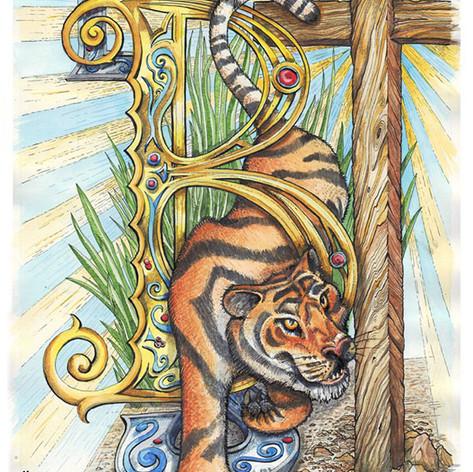 tiger_colour_small.jpg