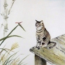 Cat and Dragonfly.jpg