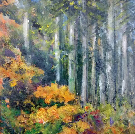 Sherwood Forest-1.jpg