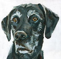 old fella, painting by Andy Currie-Scarr