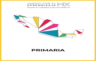 Primaria_f-01.png