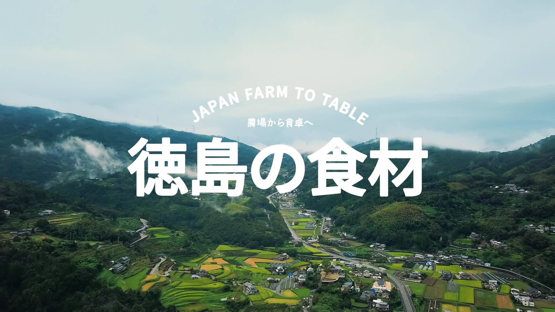 GENKI SUSHI x Hideaki Hamada x Tokushima - Hideaki Hamada
