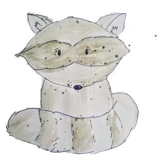 Baby Raccoon,jpg