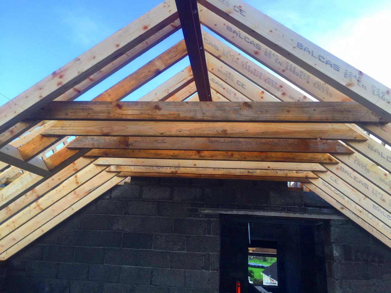 CarpentryDirectRoofing.jpg