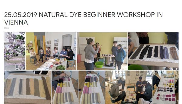 2019-05-25 natural dye beginner workshop