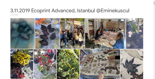 2019-11-03 Ecoprint Advanced, Istanbul @Eminekuscul