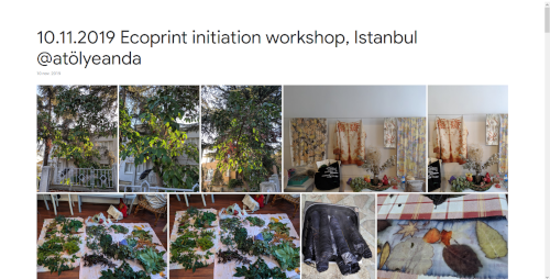 2019-11-10 Ecoprint initiation workshop, Istanbul @atölyeanda
