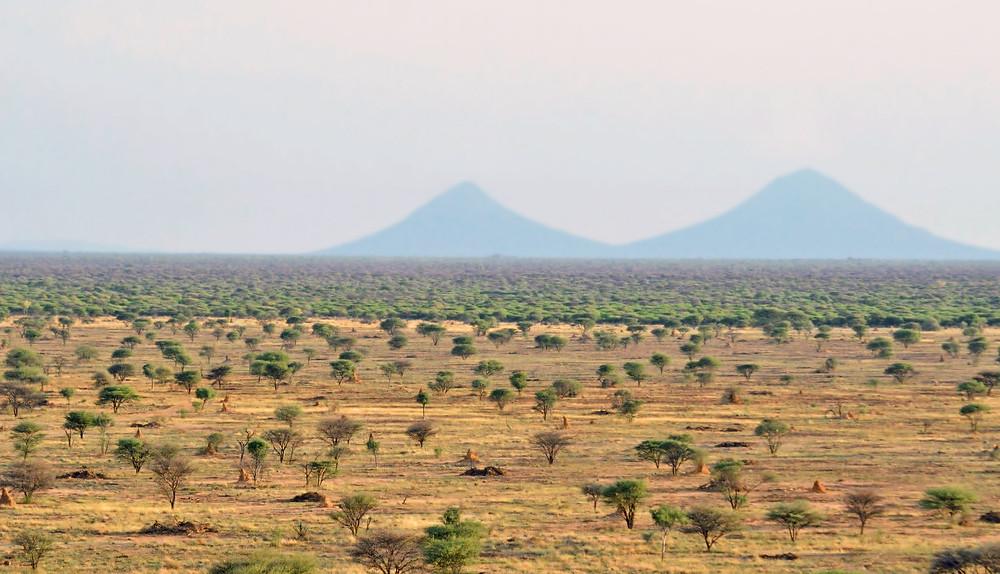 The cleared savanna on the Otjiwa Safari Lodge with the Omatako Moutain located in the Otjozondjupa Region of Namibia