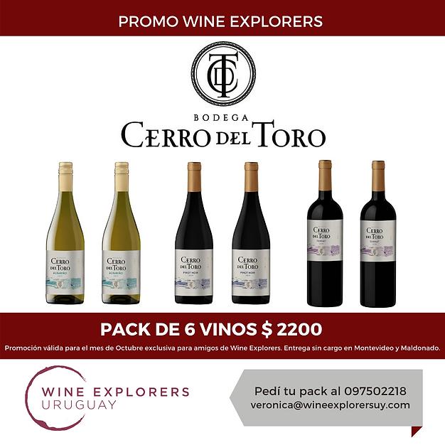 Promo Cerro del Toro Octubre 2020.png