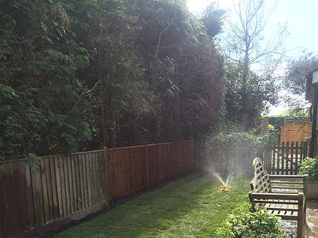 New fencing in a sunny garden