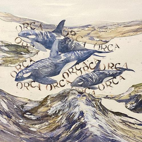 Arroyos & Orca by Ron Nordyke