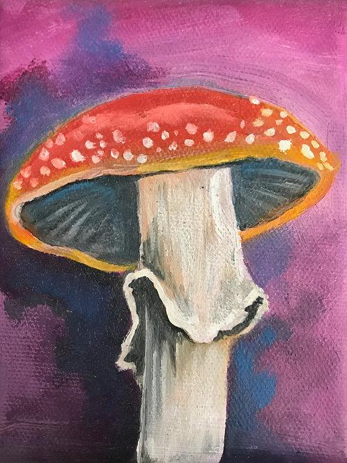 Mushroom by Jessica Hill