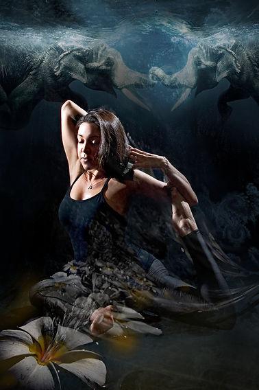 Donna Marlow.jpg