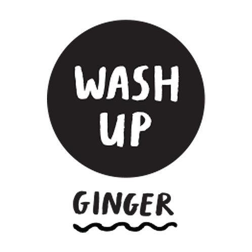 Washing Up Liquid - Ginger (Fill)