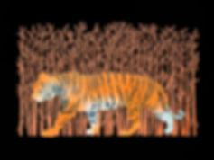 Tiger DONE.jpg