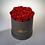 Thumbnail: Haltbare Rosenbox groß
