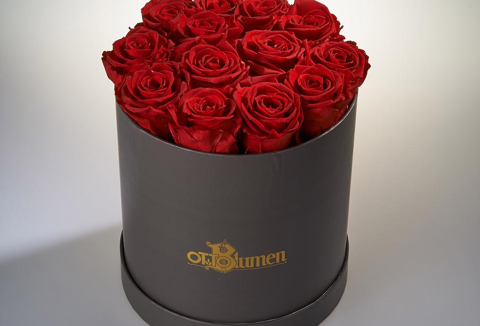 Haltbare Rosenbox groß