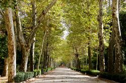 Parque Maria Luisa, Sevilha