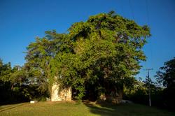 Igreja de N. SR Veracruz