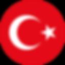 Scudetto_turco.svg.png