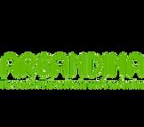 Logo%20areandina_edited.png