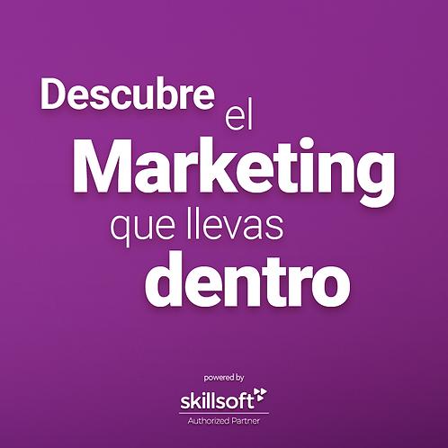 Adéntrate al mundo del marketing