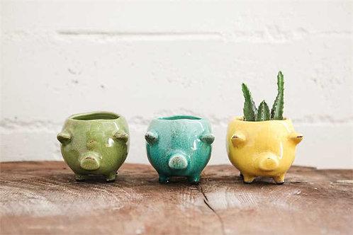 Fort Lauderdale Collection- piggy planters