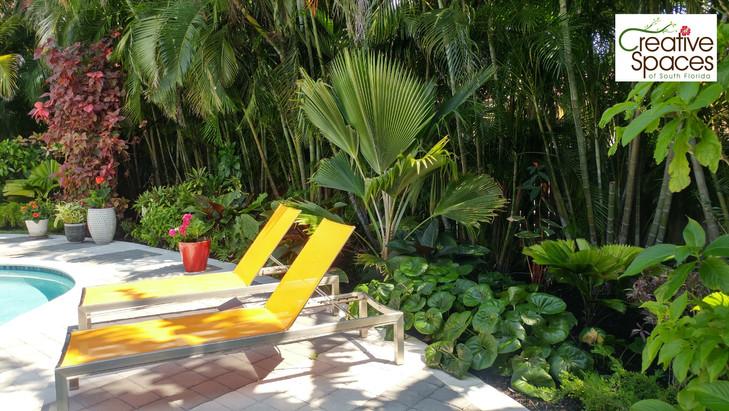 Ft. Lauderdale tropical