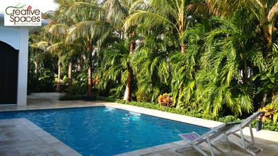 Boca Raton tropical