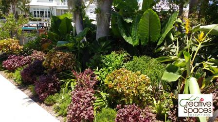 Deerfield Beach coastal tropics