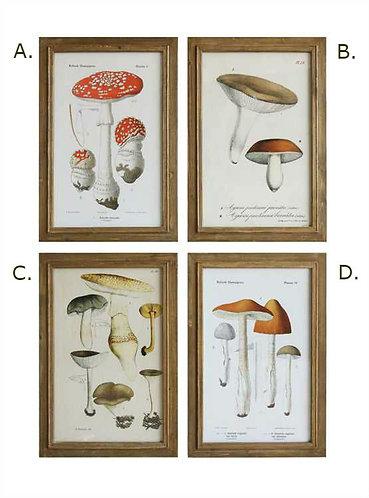 Tequesta Collection- mushroom wall art