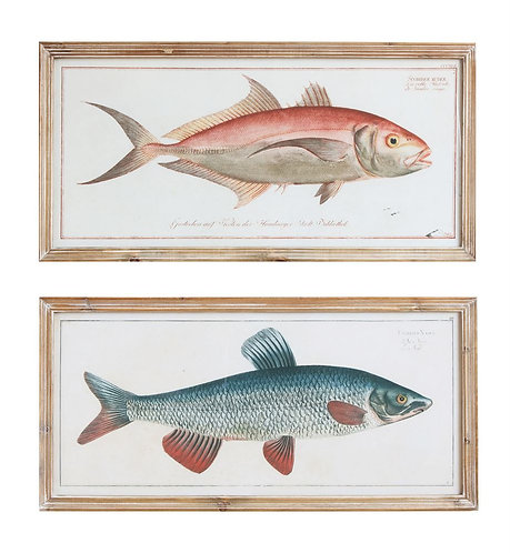 Islamorada Collection- framed fish wall decor