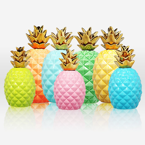 Delray Collection- colorful pineapples
