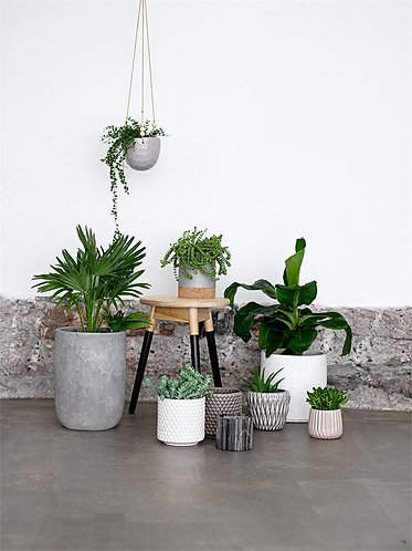 Miami Collection- chic hanging planters