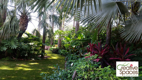 Deerfield Beach tropical
